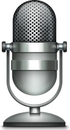 microphone 94335